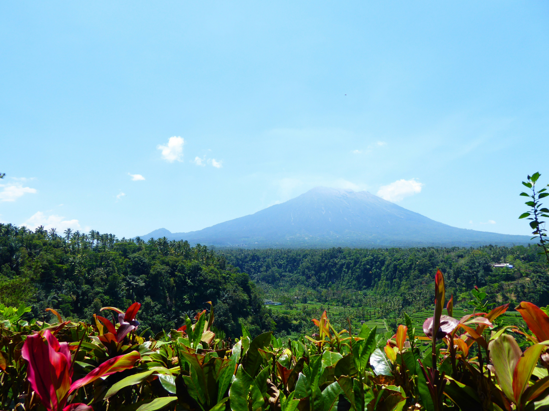 Internships in Bali with Intern Abroad HQ - Most Affordable